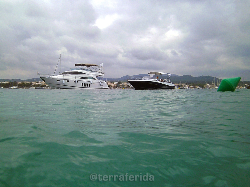 barques_ferro_posidonia_tf