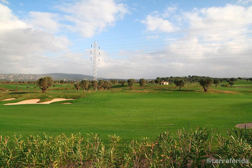 golf_1_tf
